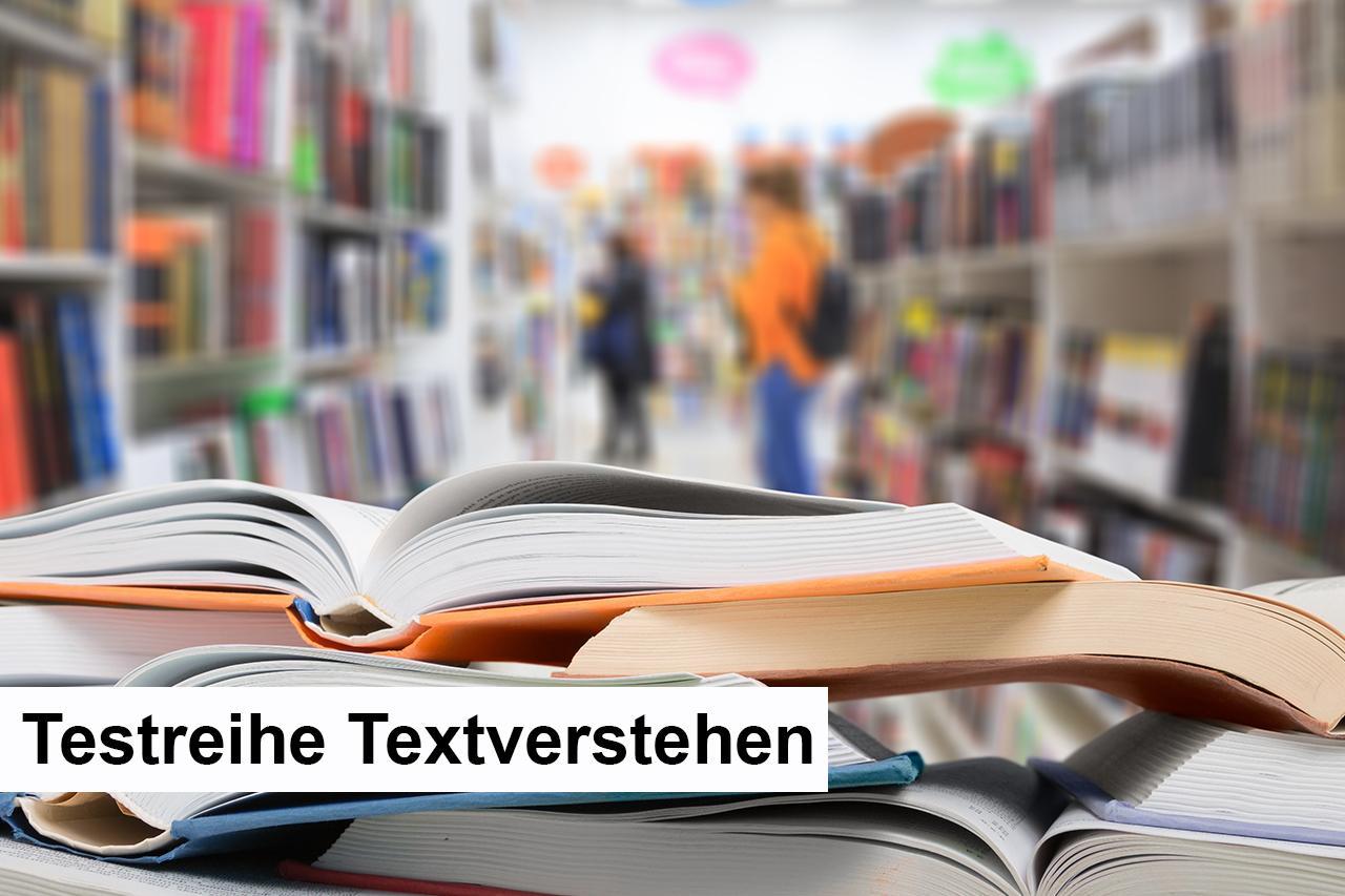 011 - D - Testreihe Textverstehen.jpg