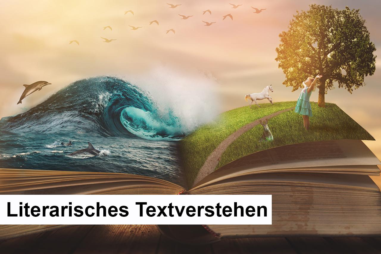 033 - D - Literarische Textverstehen - neu.jpg