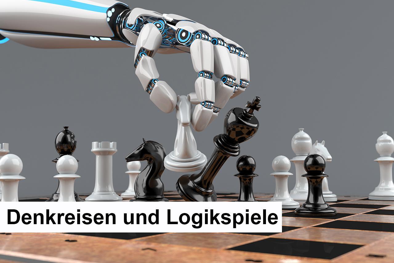 701 - M - Denkreisen und Logikspiele.jpg
